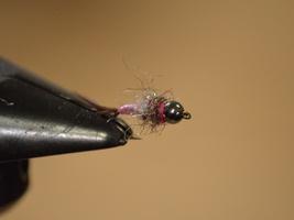 Fly Tying Kit - Rainbow Warrior